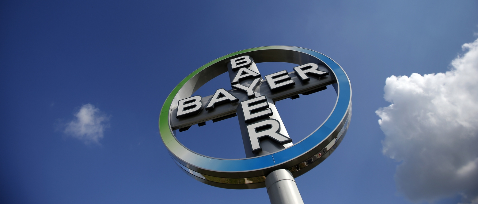 bayer intercultural